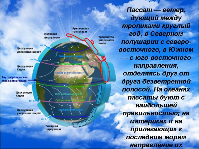 Пассат — ветер, дующий между тропиками круглый год, в Северном полушарии с се...