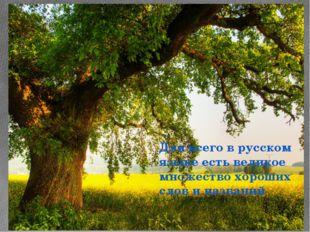 Для всего в русском языке есть великое множество хороших слов и названий