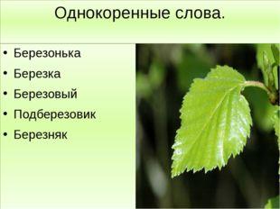 Однокоренные слова. Березонька Березка Березовый Подберезовик Березняк