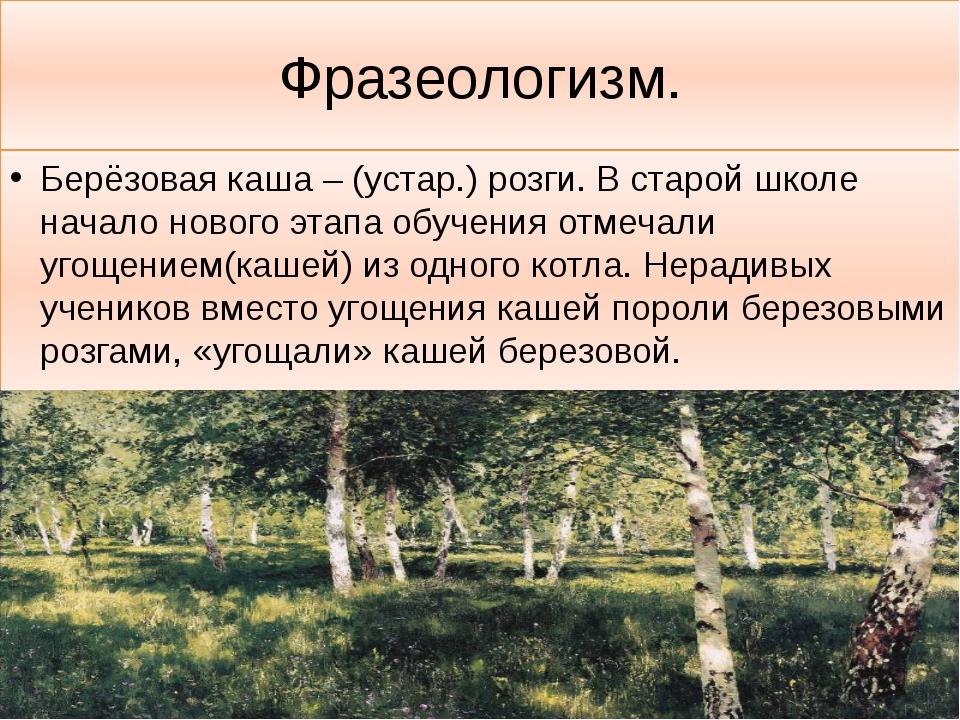 Фразеологизм. Берёзовая каша – (устар.) розги. В старой школе начало нового э...