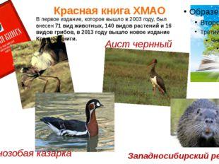 Красная книга ХМАО В первое издание, которое вышло в 2003 году, был внесен 71