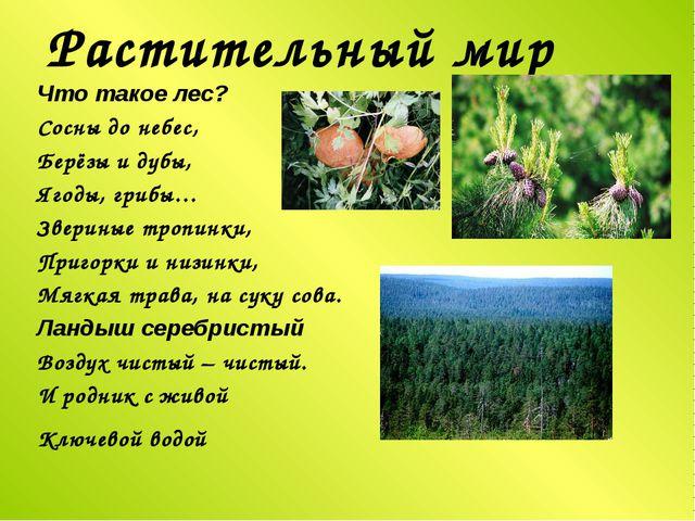 Растительный мир Что такое лес? Сосны до небес, Берёзы и дубы, Ягоды, грибы…...