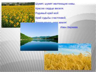 Шумят, шумят желтеющие нивы, Красою сердце веселя. Родимый край мой Край суд
