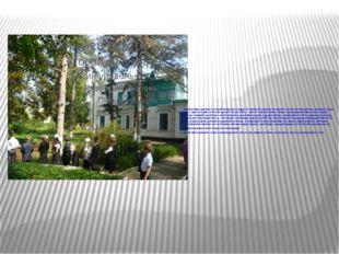 Разбили парк, деревья в который привозили в кадках из Крыма. В конюшне на при