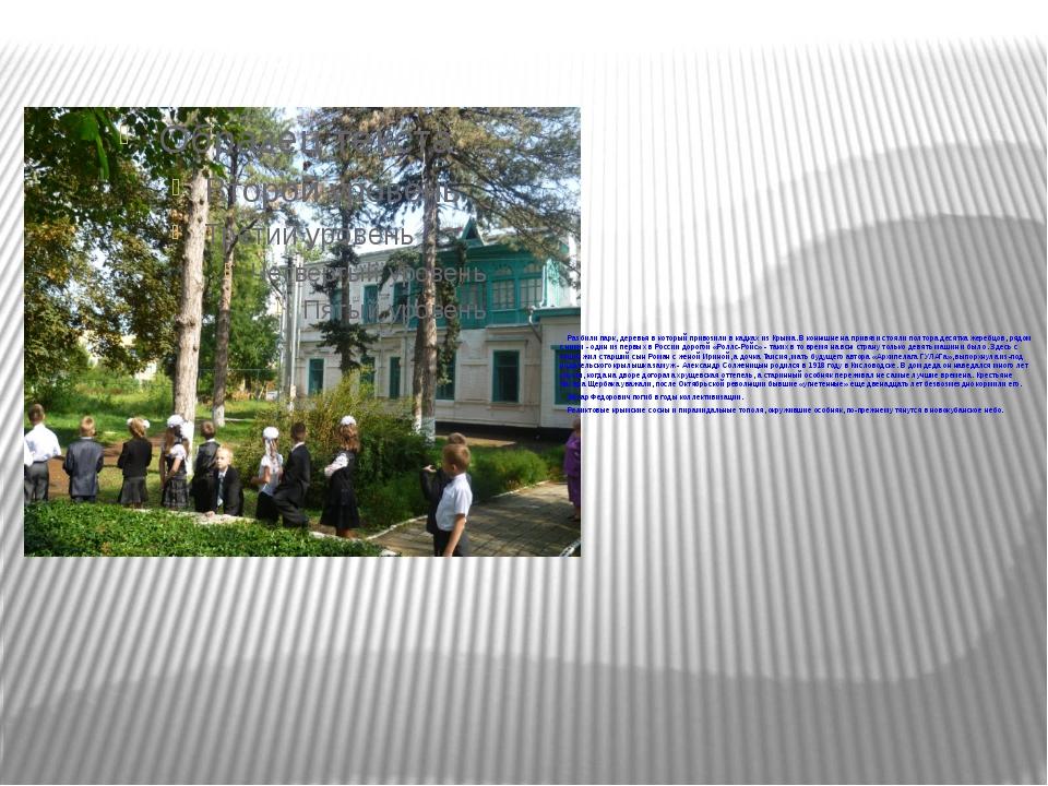 Разбили парк, деревья в который привозили в кадках из Крыма. В конюшне на при...