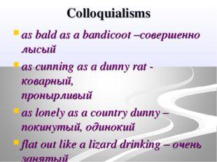 Colloquialisms as bald as a bandicoot –совершенно лысый as cunning as a dunny