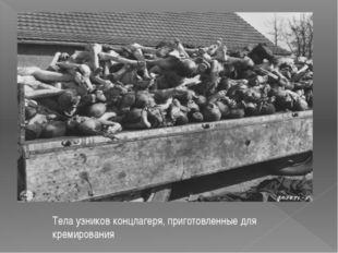 Тела узников концлагеря, приготовленные для кремирования