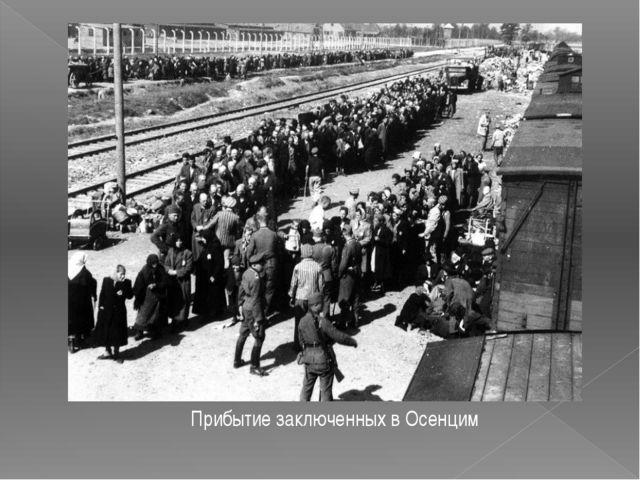 Прибытие заключенных в Осенцим
