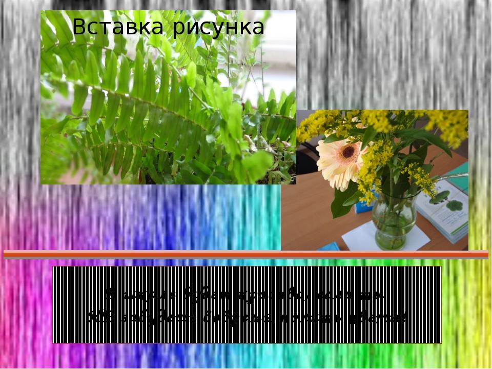 В школе будет красиво, если ты НЕ забудешь вовремя полить цветы!