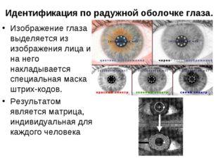 Идентификация по радужной оболочке глаза. Изображение глаза выделяется из изо