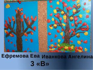 Ефремова Ева Иванкова Ангелина 3 «В»