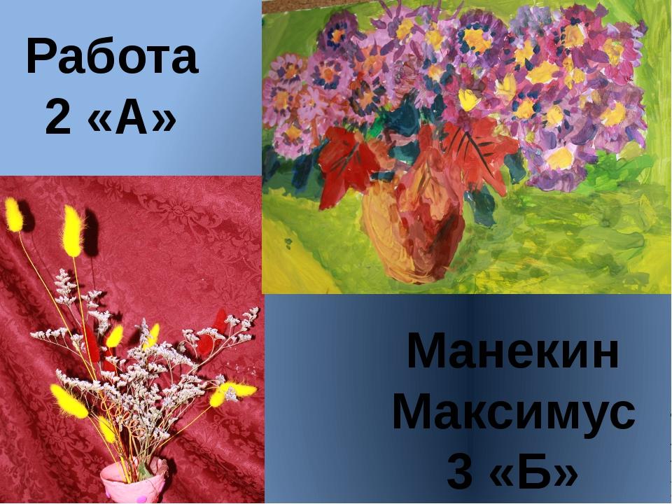 Манекин Максимус 3 «Б» Работа 2 «А»