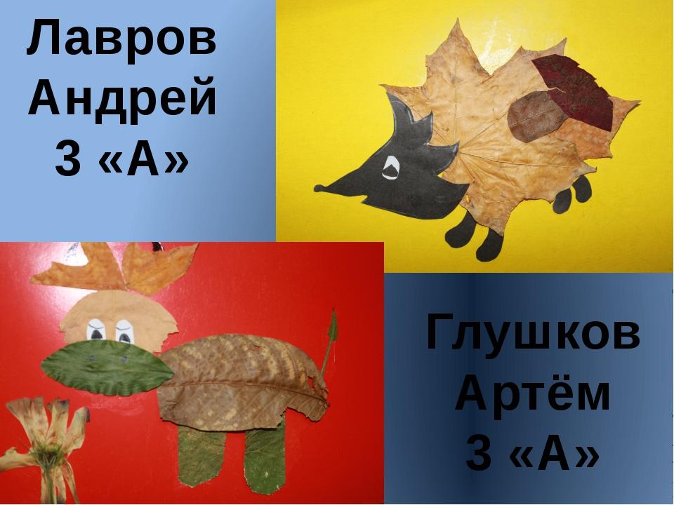 Лавров Андрей 3 «А» Глушков Артём 3 «А»