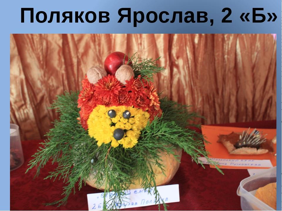Поляков Ярослав, 2 «Б»