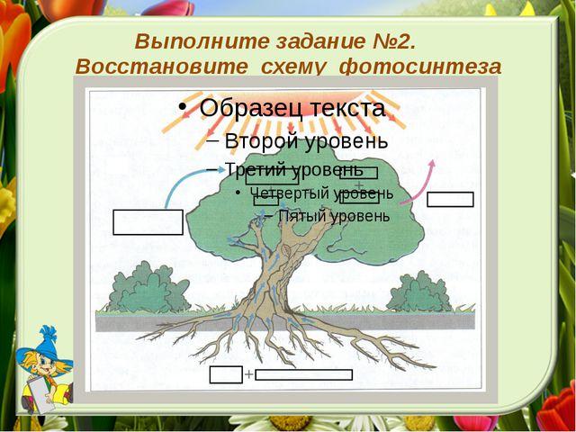 Выполните задание №2. Восстановите схему фотосинтеза