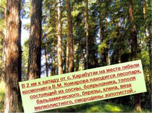 В 2 км к западу от с. Карабутак на месте гибели космонавта В.М. Комарова нахо