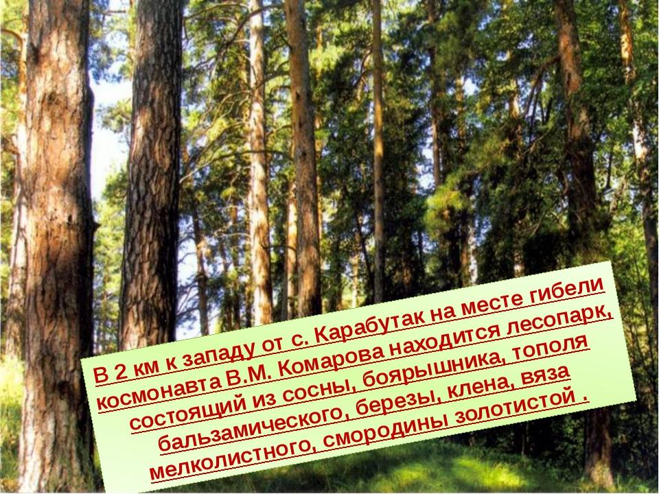 В 2 км к западу от с. Карабутак на месте гибели космонавта В.М. Комарова нахо...