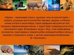 «Африка – неизлечимая страсть: вдохнешь пыль ее красной земли – латерита, усл