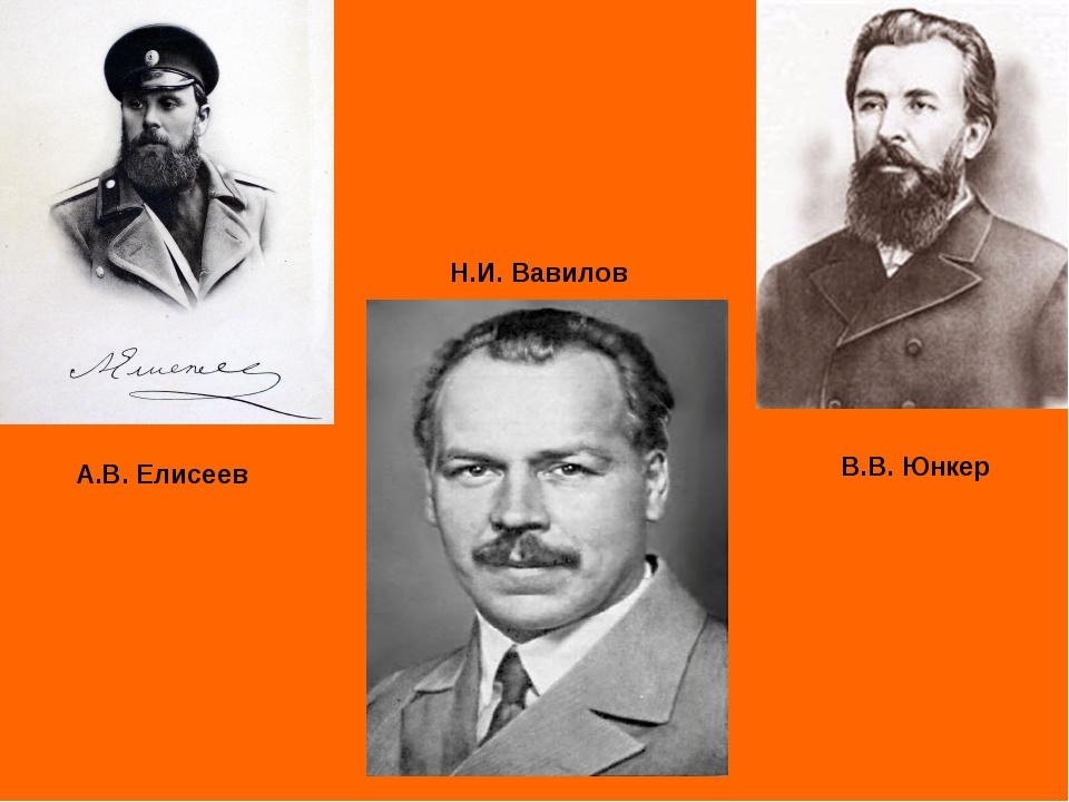 А.В. Елисеев В.В. Юнкер Н.И. Вавилов