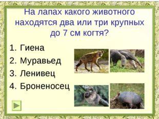 На лапах какого животного находятся два или три крупных до 7 см когтя? Гиена