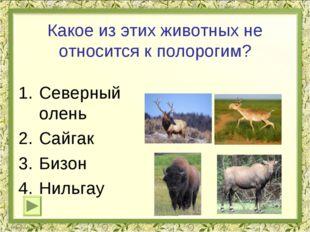 Какое из этих животных не относится к полорогим? Северный олень Сайгак Бизон
