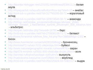 http://ksanka.hiblogger.net/1231052.html/thread/5396111 - белая акула http://