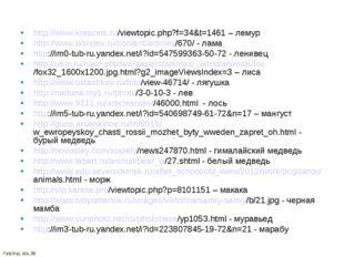 http://www.krascats.ru/viewtopic.php?f=34&t=1461 – лемур http://www.latindex