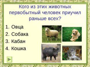 Кого из этих животных первобытный человек приучил раньше всех? Овца Собака Ка