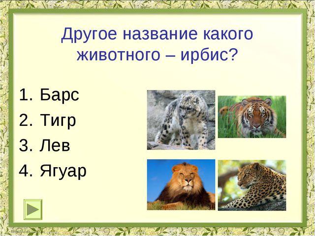 Другое название какого животного – ирбис? Барс Тигр Лев Ягуар