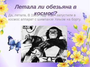 Летала ли обезьяна в космос? Да, летала. В 1961 году США запустили в космос а