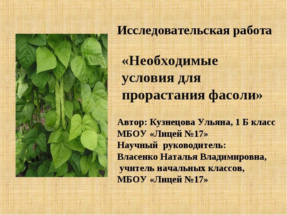 Автор: Кузнецова Ульяна, 1 Б класс МБОУ «Лицей №17» Научный руководитель: Вла...