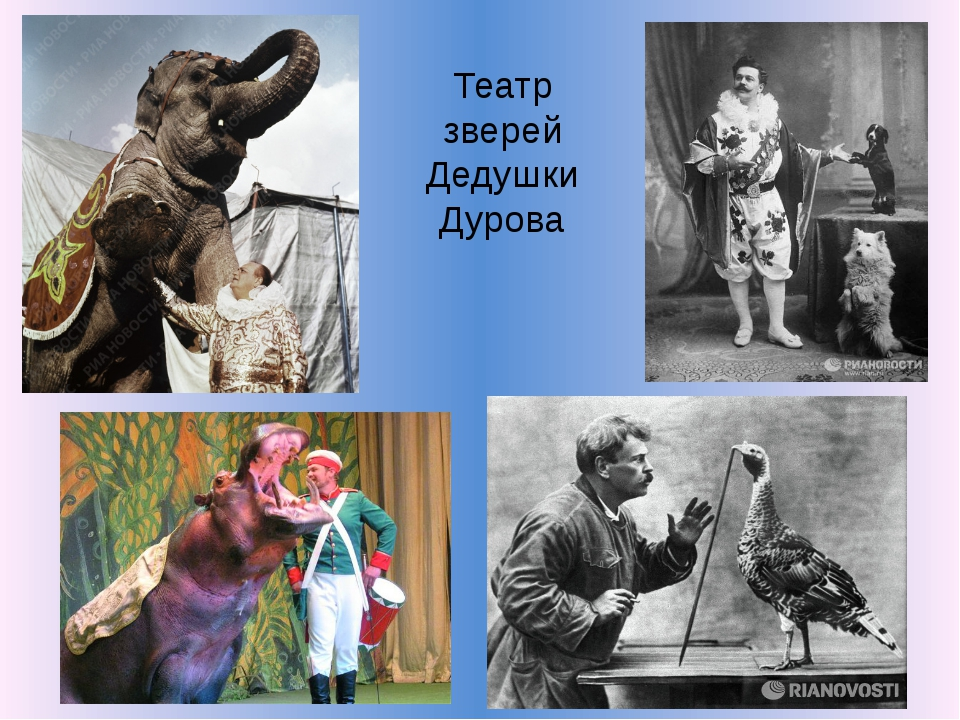 Театр зверей Дедушки Дурова