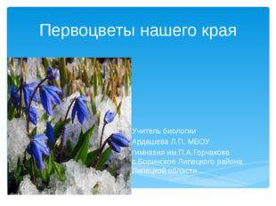 Первоцветы нашего края Учитель биологии Ардашева Л.П. МБОУ гимназия им.П.А.Го