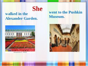 She walked in the Alexander Garden. went to the Pushkin Museum.