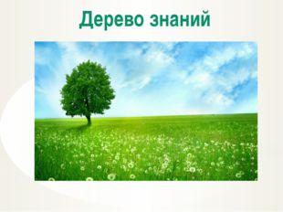 Дерево знаний До новых встреч!