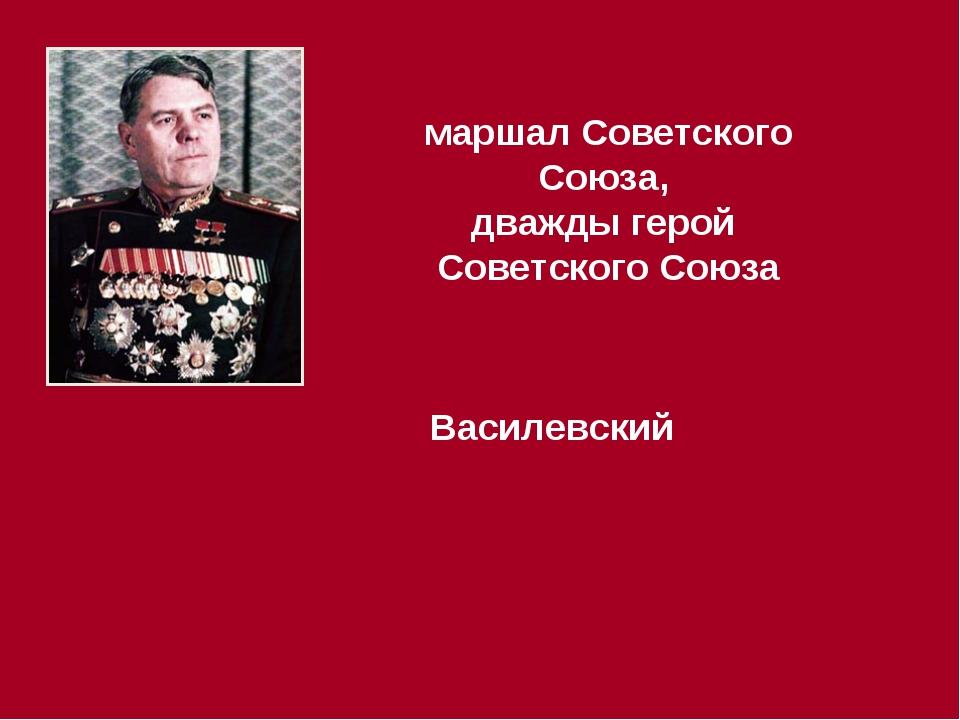 маршал Советского Союза, дважды герой Советского Союза Василевский