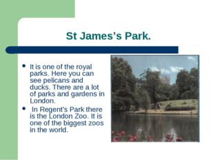 St James's Park. It is one of the royal parks. Here you can see pelicans and