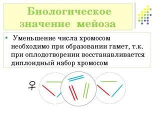 Уменьшение числа хромосом необходимо при образовании гамет, т.к. при оплодот