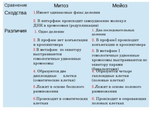 1.Имеют одинаковые фазы деления 2. В интерфазе происходит самоудвоение молеку