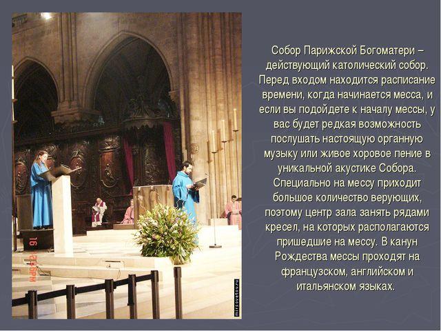 Собор Парижской Богоматери – действующий католический собор. Перед входом нах...