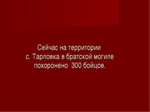 Сейчас на территории с. Тарловка в братской могиле похоронено 300 бойцов.