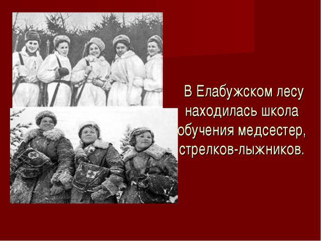 В Елабужском лесу находилась школа обучения медсестер, стрелков-лыжников.