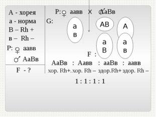 А - хорея а - норма В – Rh + в – Rh – P: аавв АаВв F - ? Р: аавв Х АаВв G: А