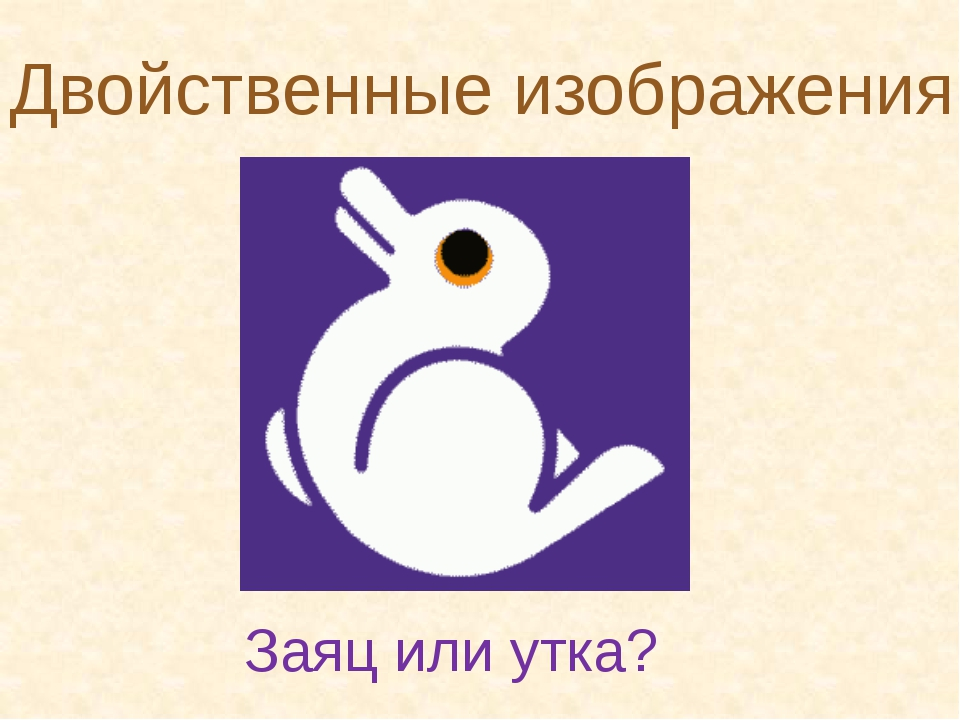 Двойственные изображения Заяц или утка?