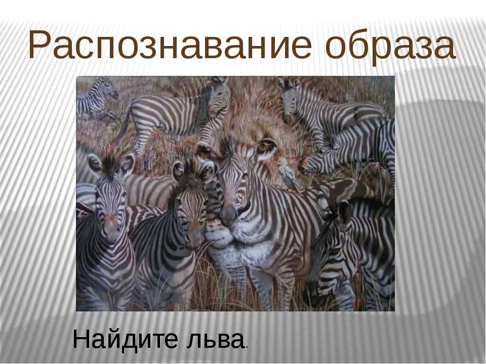 Распознавание образа Найдите льва.