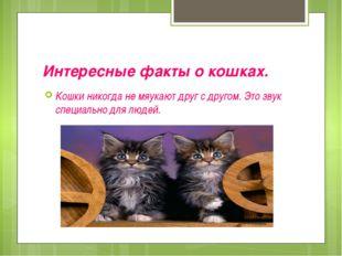 Интересные факты о кошках. Кошки никогда не мяукают друг с другом. Это звук с