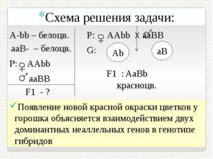 P: AAbb aаВB F1 - ? Р: АAbb Х aаВB G: Аb aB F1 : А-bb – белоцв. aaB- – белоц