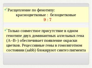 Расщепление по фенотипу: красноцветковые : белоцветковые 9 : 7 Только совмест