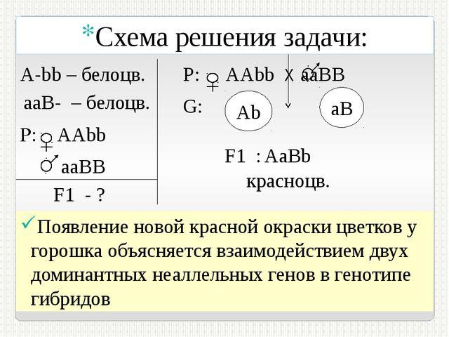 P: AAbb aаВB F1 - ? Р: АAbb Х aаВB G: Аb aB F1 : А-bb – белоцв. aaB- – белоц...