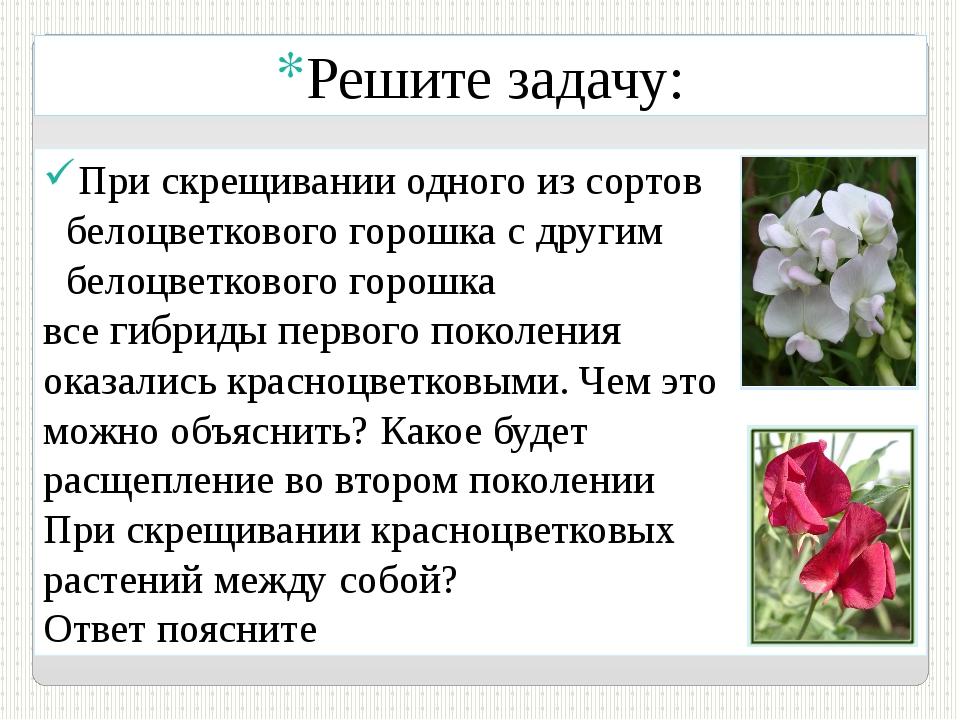 Решите задачу: При скрещивании одного из сортов белоцветкового горошка с друг...